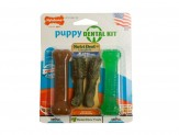 Nylabone Dental Kit for Puppies Chicken & Peanut Butter Flavor 1ea/Petite - Up To 15 lb