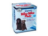 Four Paws Wee-Wee Gigantic Dog Training Pads 18-Count 1ea/Gigantic 27.5 in X 44 in