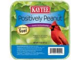 Kaytee Positively Peanut Suet 11oz