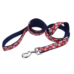 Ribbon Nylon Dog Leash Red 1ea/1 In X 6 ft