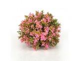 biOrb Flower Ball Pink