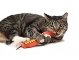Petstages Green Magic Dynamite Cat Toy