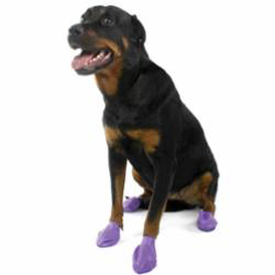 Pawz Dog Boots Large Purple