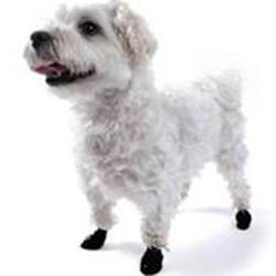 Pawz Dog Boots Black Extra Extra Smal