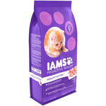 IAMS Proactive Health Playful Kitten 7lbs