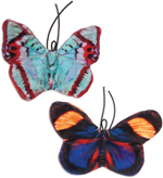 Jackson Galaxy Crinkle Flies Catnip Toy Multi-Color 1ea/2 pk