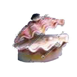 Penn-Plax Tropical Clam Air Ornament