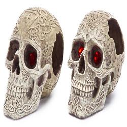 Penn-Plax Skull Gazer Assorted Styles 5in